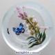Bridal Wreath & Butterfly 1/1